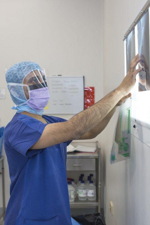 orthopedic surgeon Caulfield
