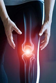 orthopedic surgeon Brighton